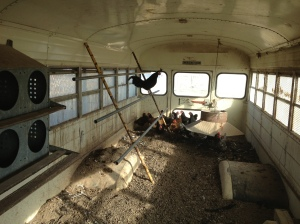 Inside of Chicken Bus