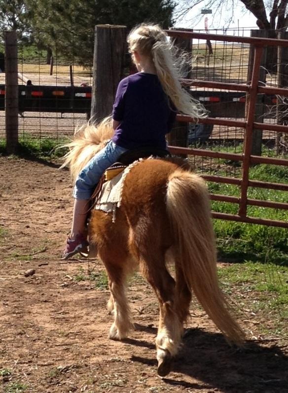 Girl and Shetland Pony
