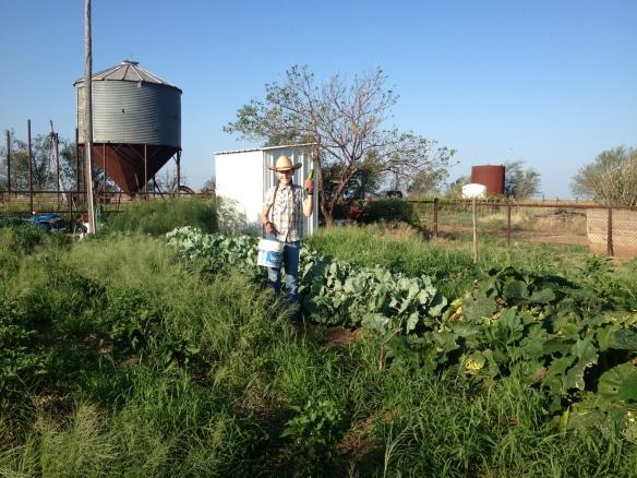 gardening in sw oklahoma