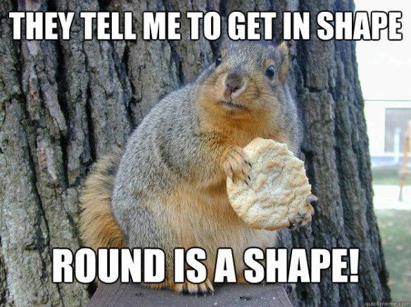 squirrel meme