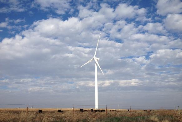 oklahoma wind turbine with grazing cattle