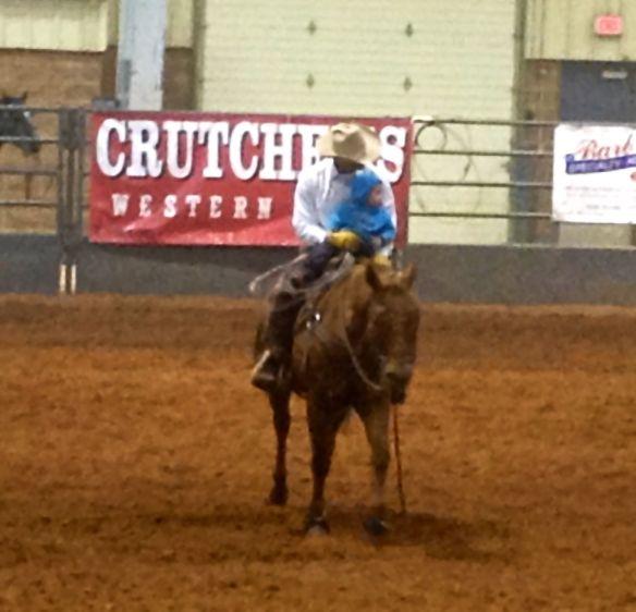 Littlest cowboy
