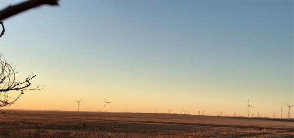 winter fields, wind farm on southern plains