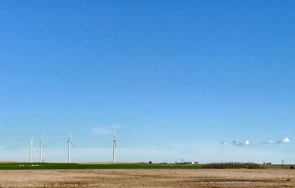 signs of spring on oklahoma wind farm